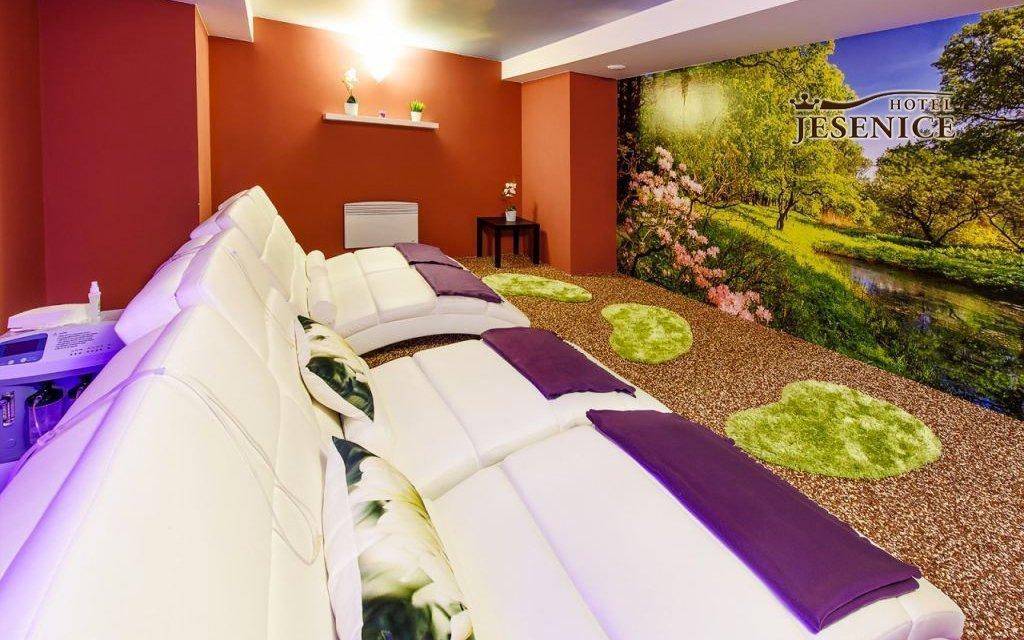 Křivoklátsko ve 3* hotelu Jesenice s polopenzí a 8 wellness procedurami