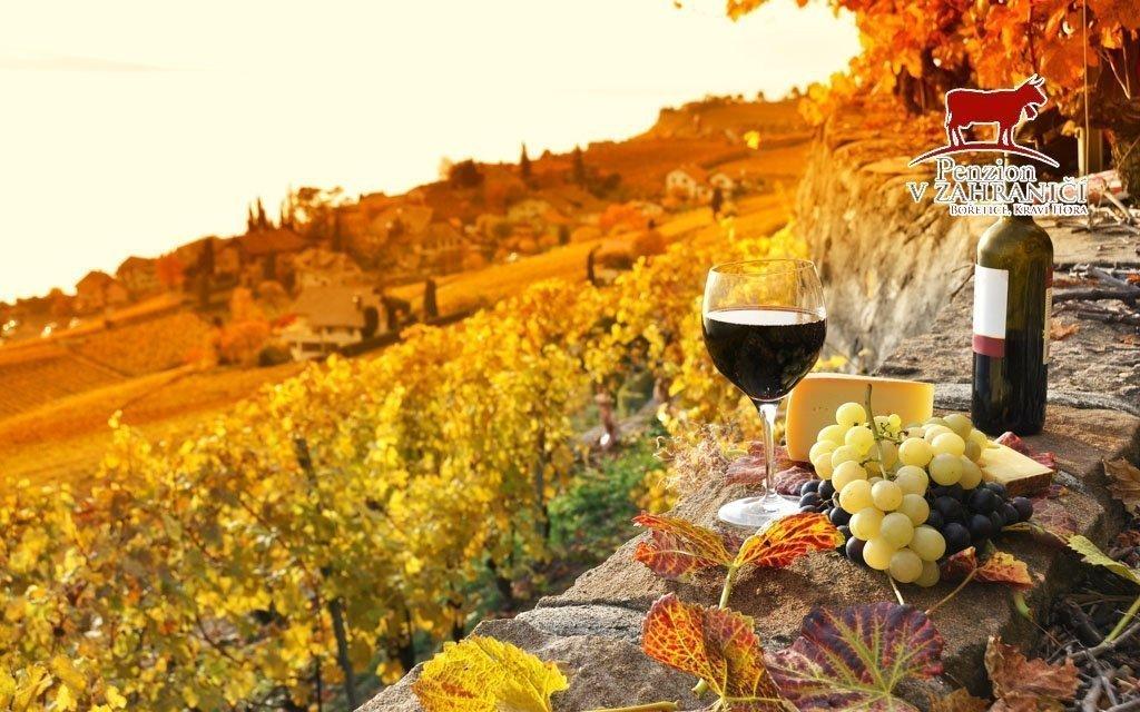 Jižní Morava: vinařský pobyt s neomezenou konzumací vína, rautem a mandlovicí