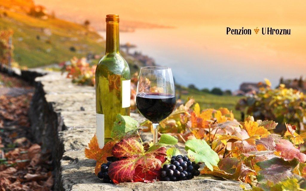 Velké Bílovice na jižní Moravě v penzionu s polopenzí, lahví vína a vířivkou