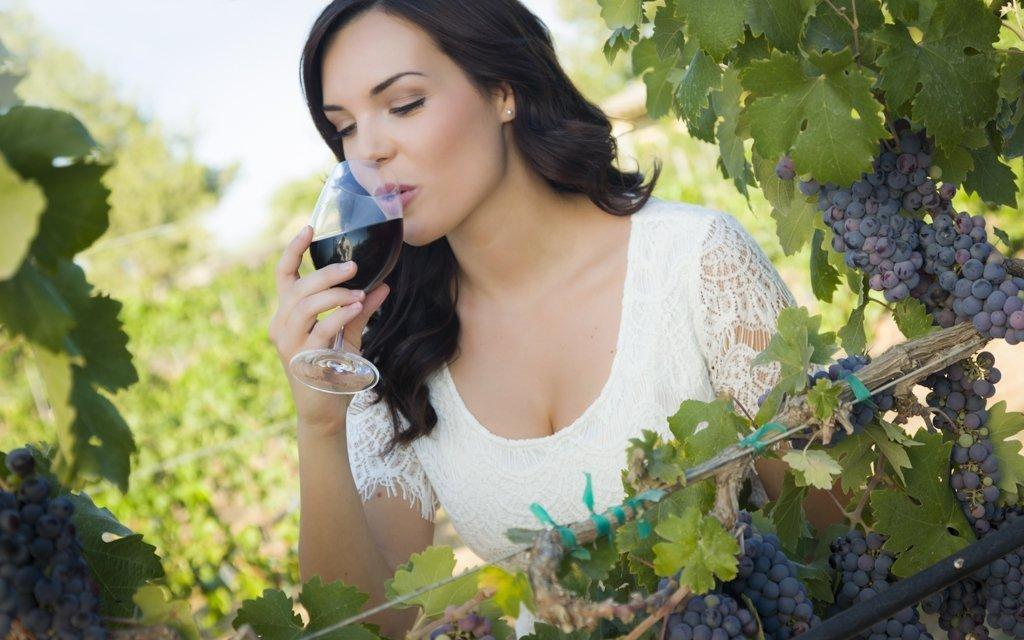 Jižní Morava s degustací vína a polopenzí v penzionu U Tomčalů až do září