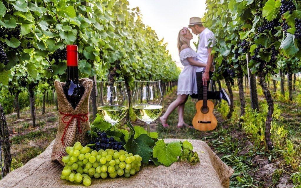 Jižní Morava: vinařský pobyt v oceněném hotelu nedaleko Znojma s polopenzí