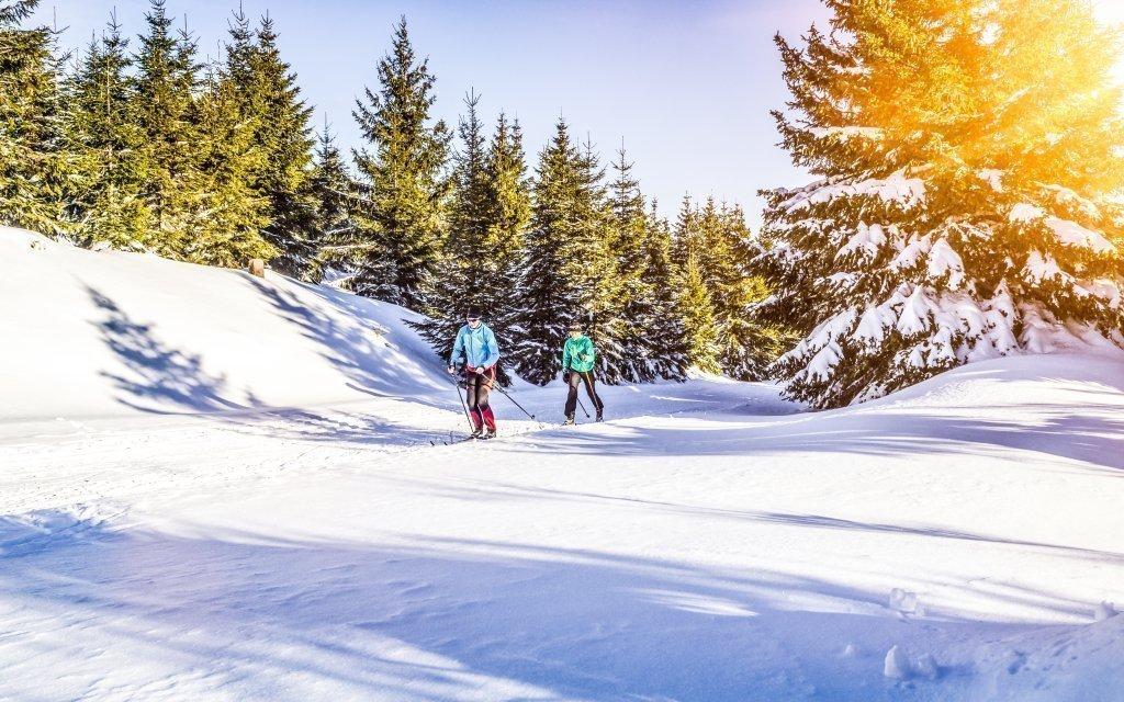 Bavorský les s polopenzí a neomezeným wellness + dítě do 6,9 let zdarma