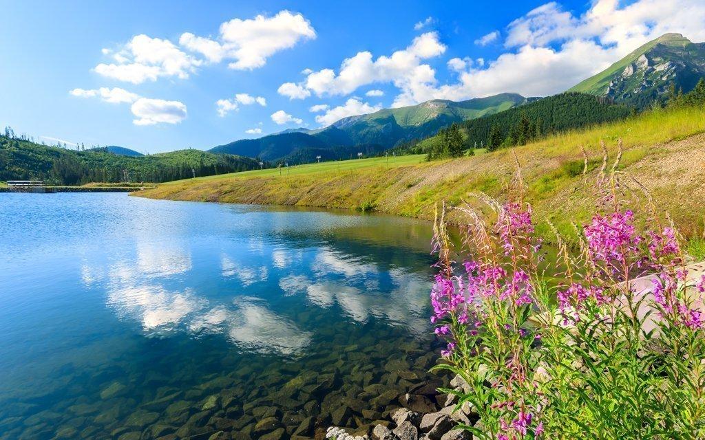 Belianské Tatry ve Vile Artemis se snídaní a slevami do aquaparků do konce září