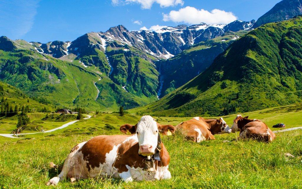 Vídeňské Alpy na léto ve Sporthotelu am Semmering *** s polopenzí a wellness