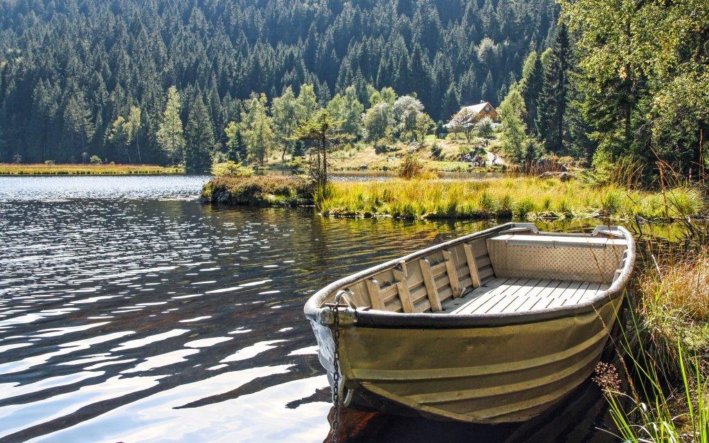 Bavorský les ve Ferienhotelu Waldkönig s polopenzí a wellness + dítě zdarma