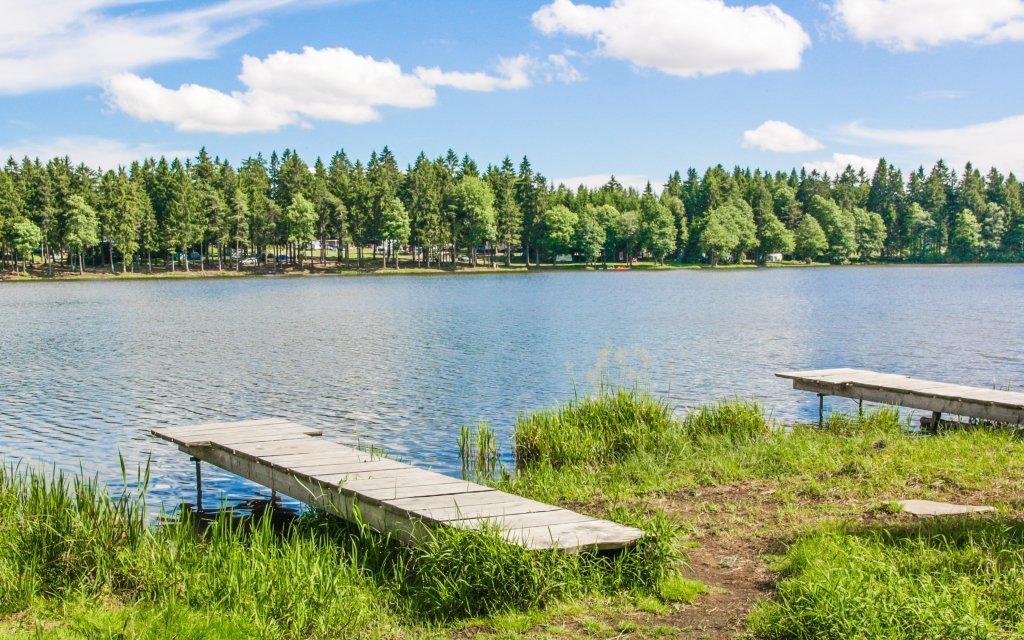 Vysočina: pobyt u rybníka v Penzionu Sykovec s polopenzí a wellness s vířivkou