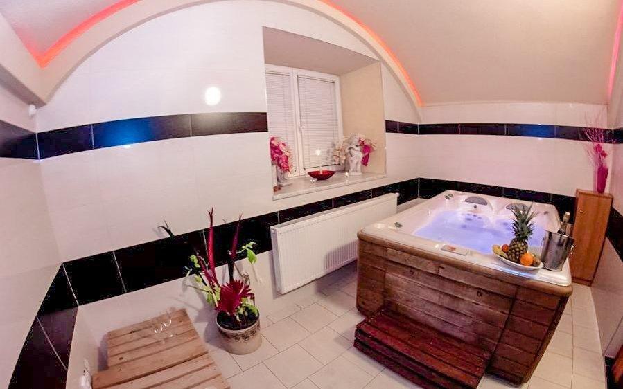 Relaxační pobyt v Hotelu Allvet *** u Vyškova s wellness a polopenzí
