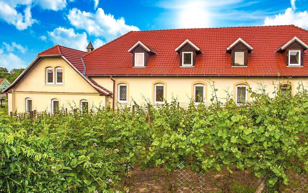 Znojmo pro milovníky vína: Hotel Schaller se snídaní a vstupenkami na Vinobus