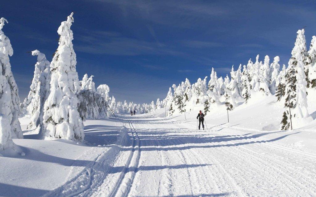 Jeseníky: Chaty pod Pradědem až pro 11 osob a jen 300 metrů od ski areálu